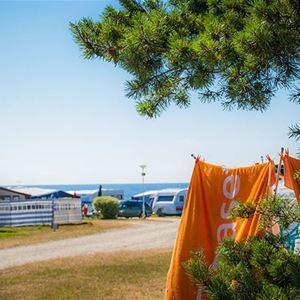 Tofta Camping - Husvagn/husbilsplats - Havsnära Blå