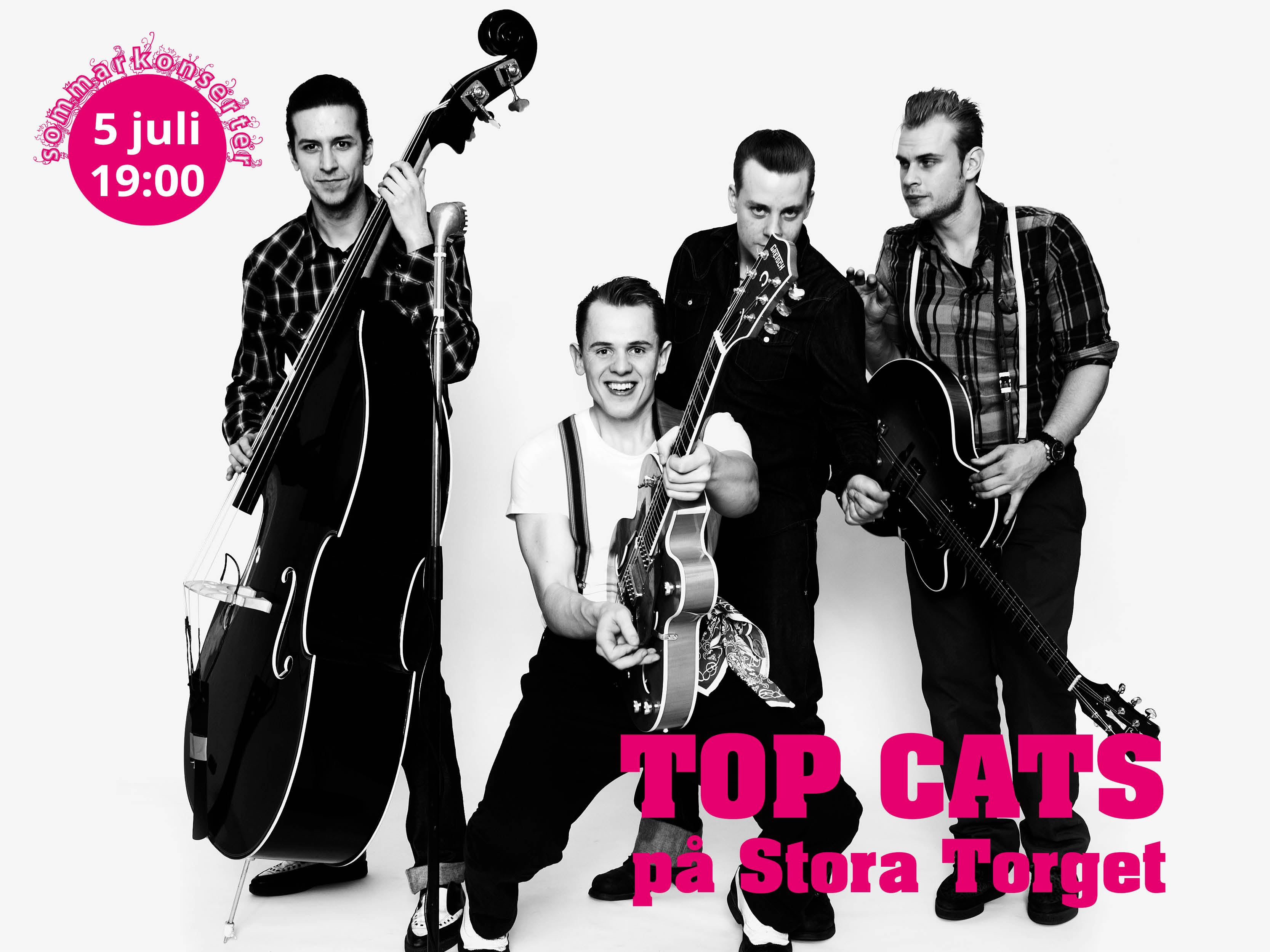 Sommarkonsert - Top Cats
