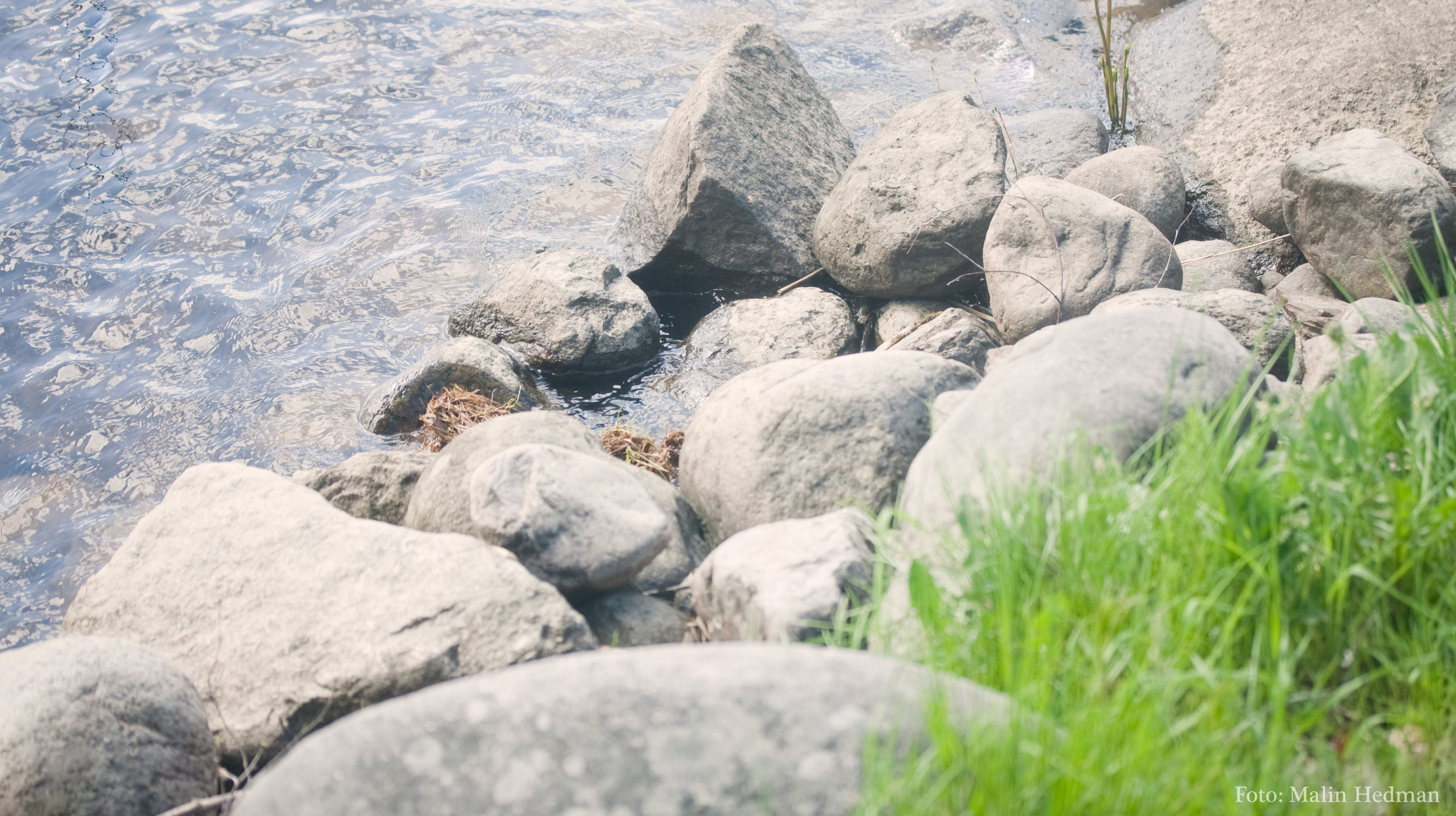 Malin Hedman,  © Malå kommun, Strandgårdskväll