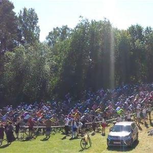Lilla Mörksuggejakten - Mountainbike, cykel