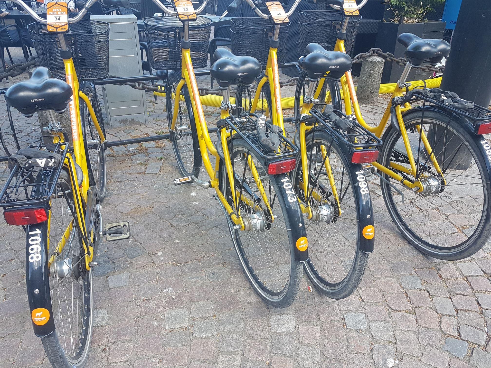 Lisbeth Holmåker,  © Ängelholms Näringsliv, Cykeluthyrning