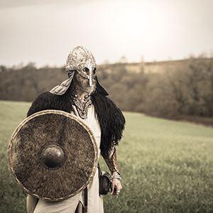 Visite guidée : Exposition Nous les appelons Vikings ! + entrée musée d'histoire de Nantes et exposition temporaire en cours