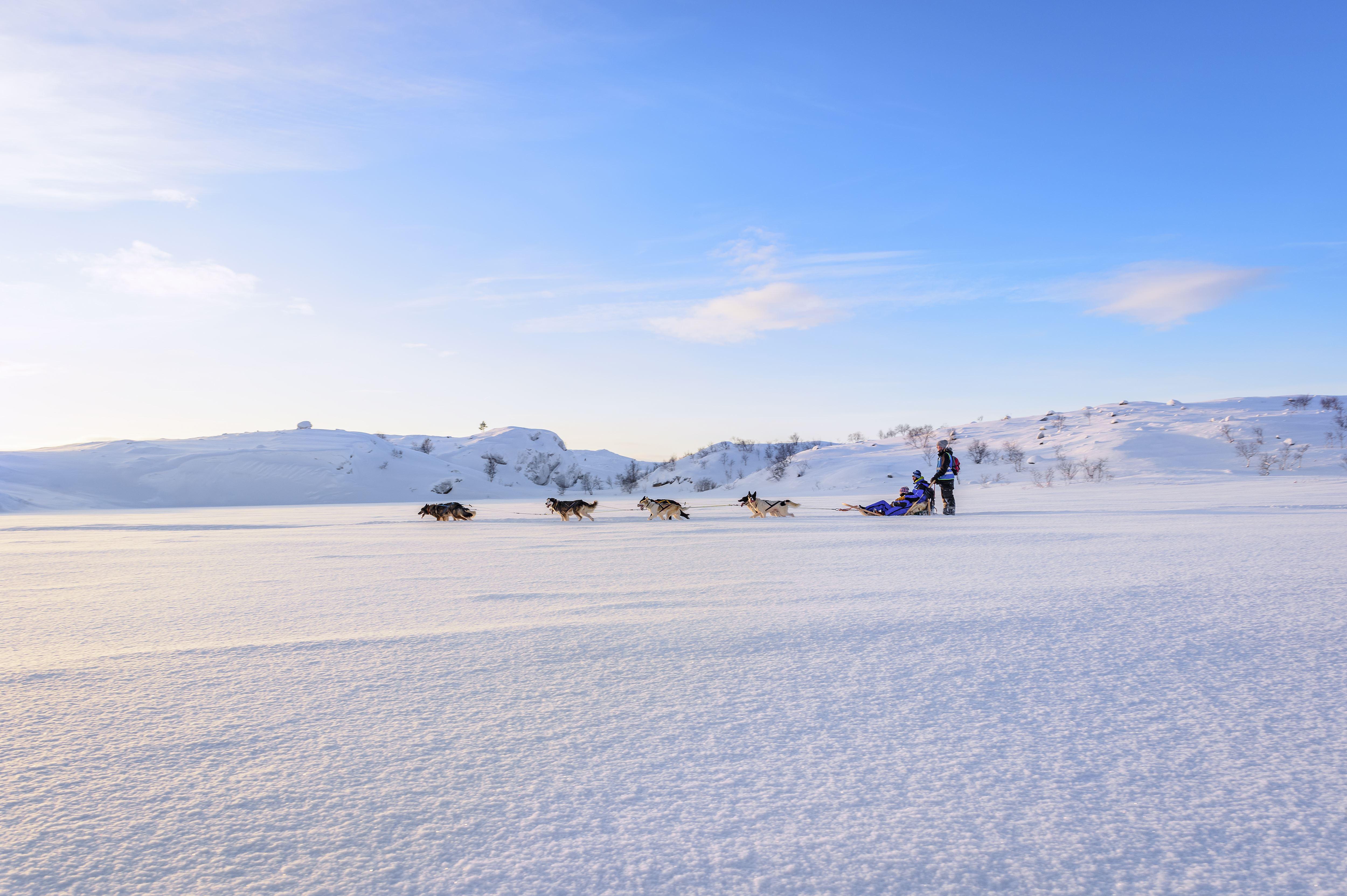 © Snowhotel Kirkenes, Snowhotel Kirkenes - Husky Safari 2 timer
