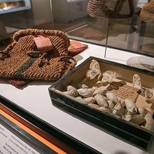 Visite guidée : Expression(s) décoloniale(s) + entrée musée d'histoire de Nantes et exposition temporaire en cours