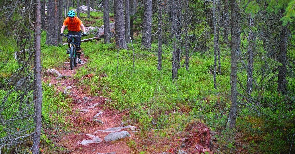 Mountain Biken durch die Naturschutzgebiete