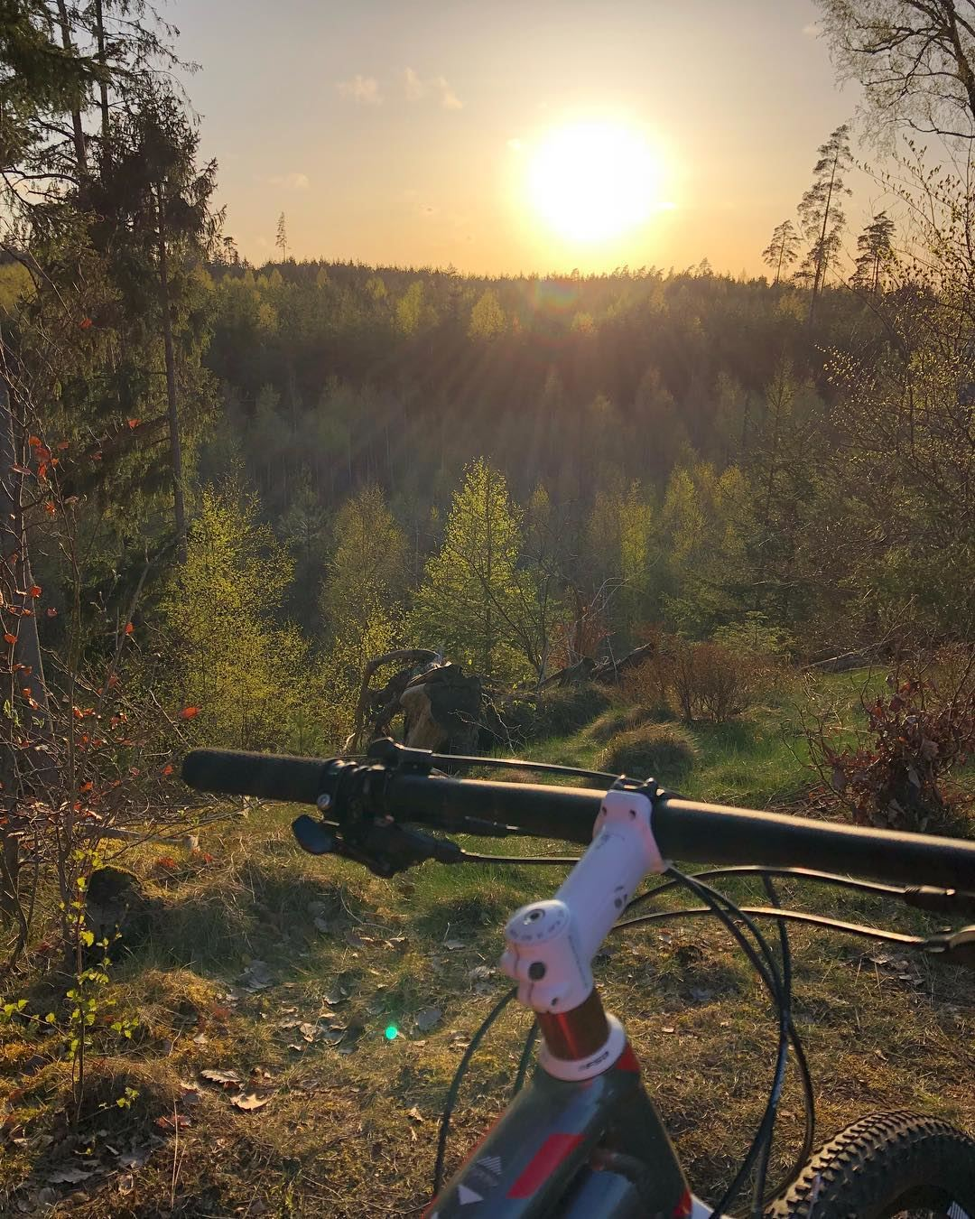 Naturschutzgebiet Evedalsåsen