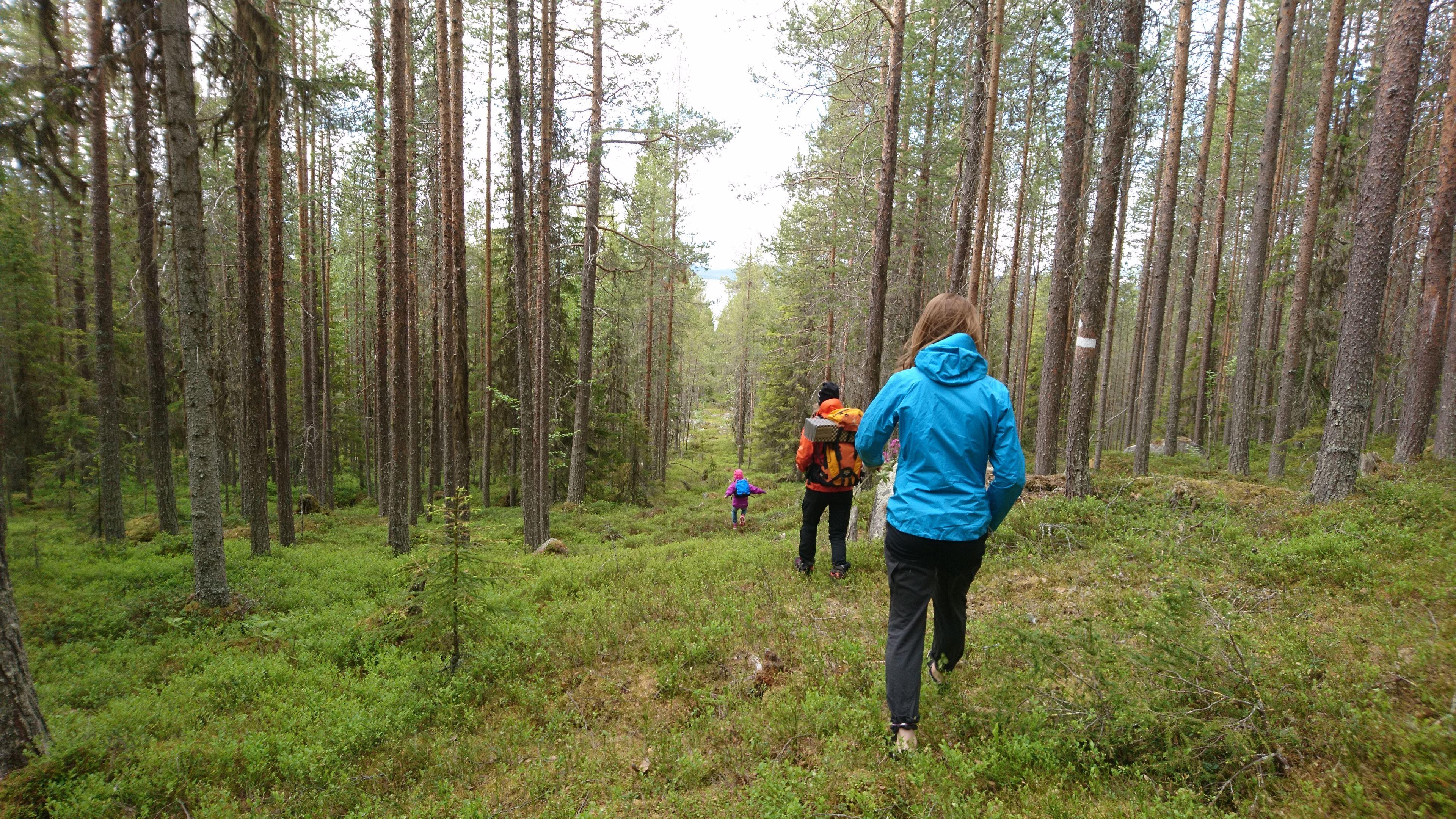 Kyrkberget Nature Reserve