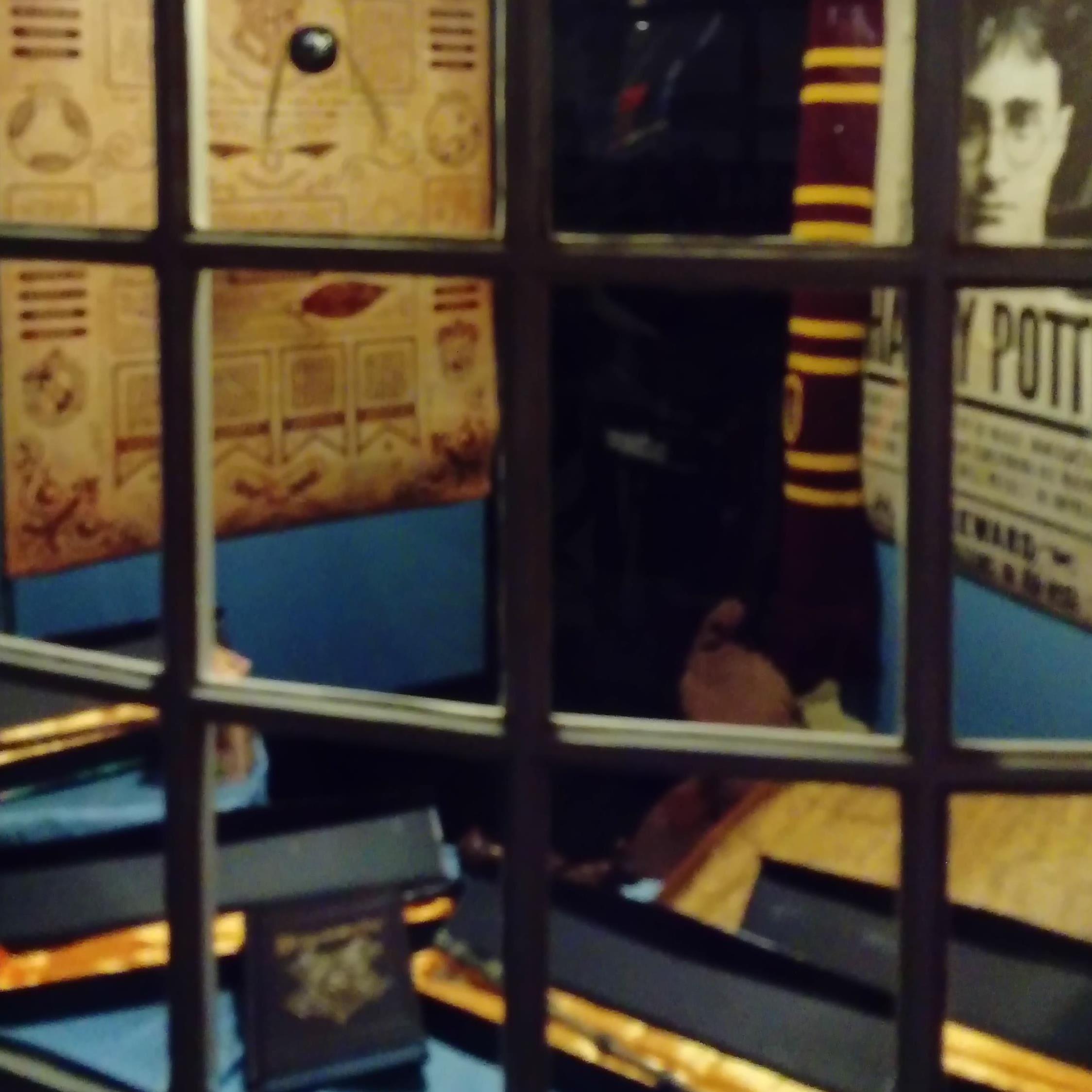 Sommeromvisning i Museum Obscurum med Harry Potter som tema