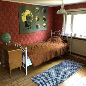 Vasaloppet. Private room M48 Selja, Mora