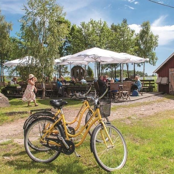 Dagsutflykt till Hasselö med cykel (lunch kl 13.30)
