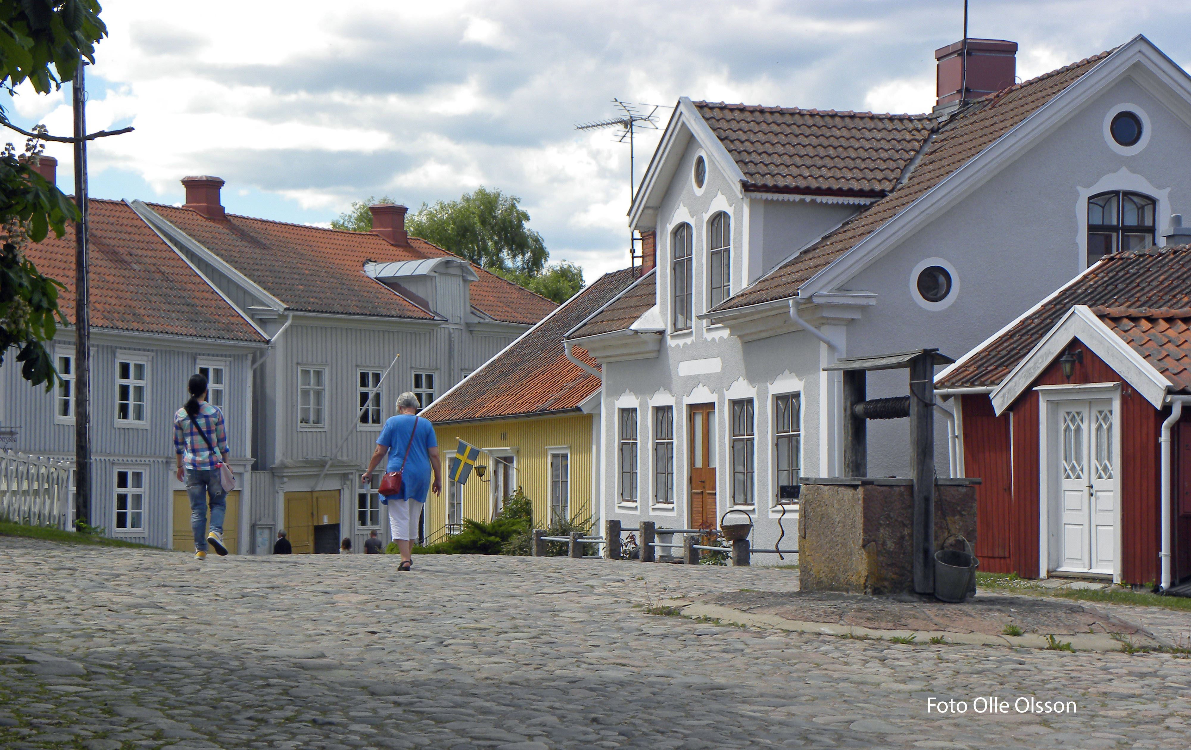 Kulturdag & 100-årsjubileum i Pataholm!