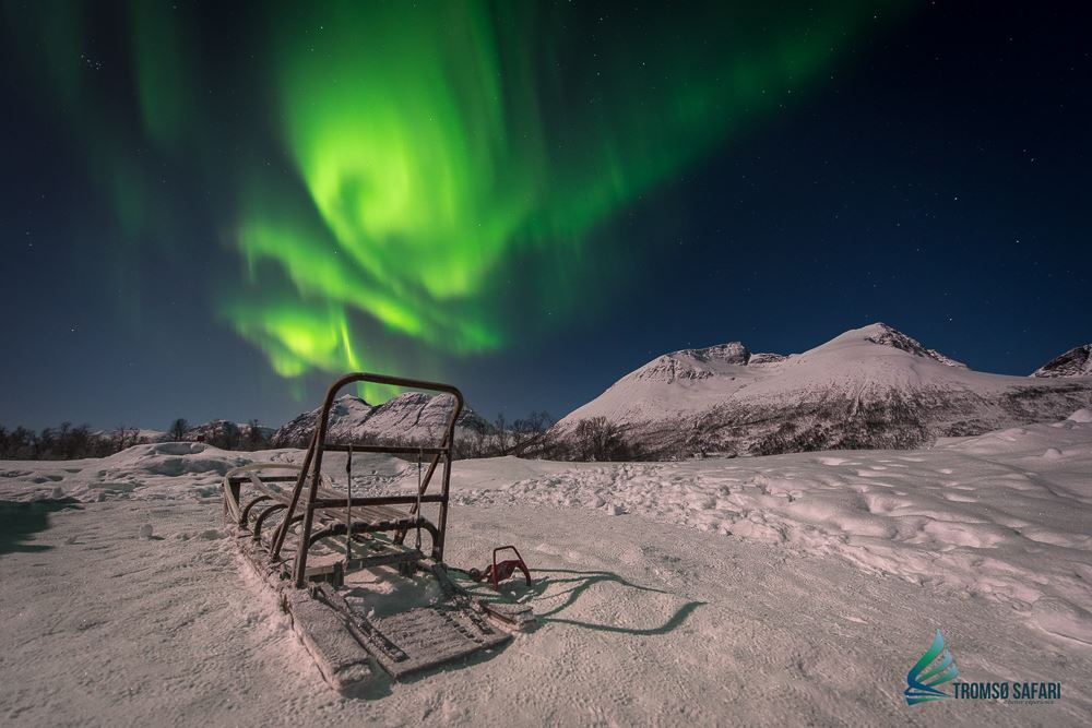 Photo & Northern Lights Work-Shop