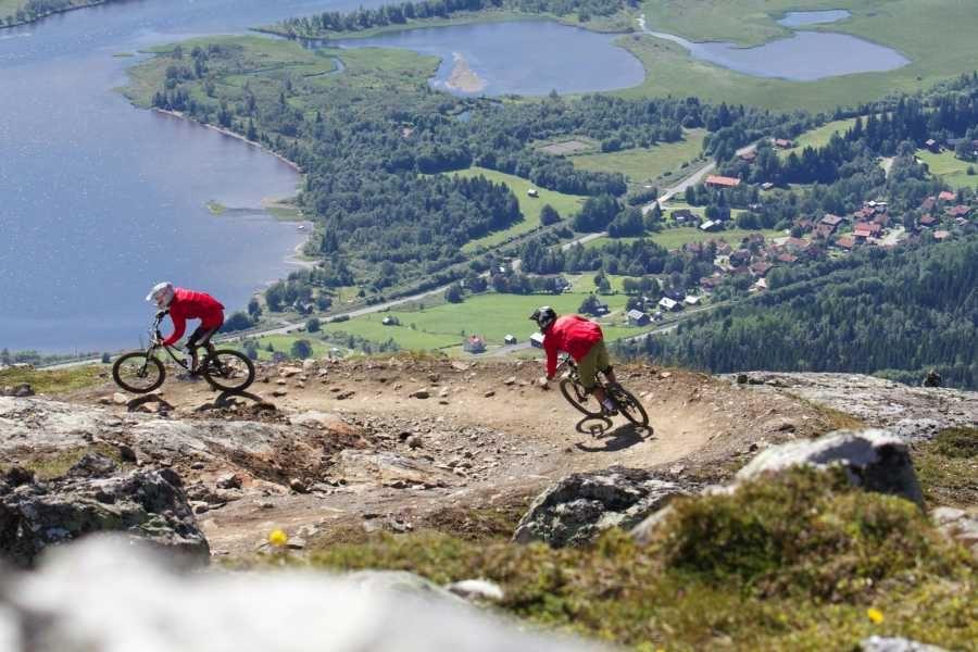 Rent a downhill bike in Åre
