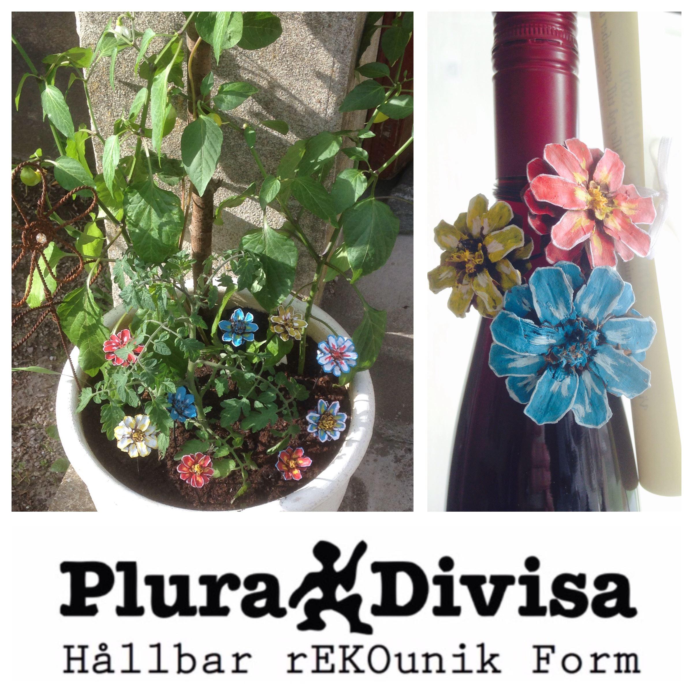 © Plura Divisa hemsida, Kreativa Fingrar - Blommor av kottar
