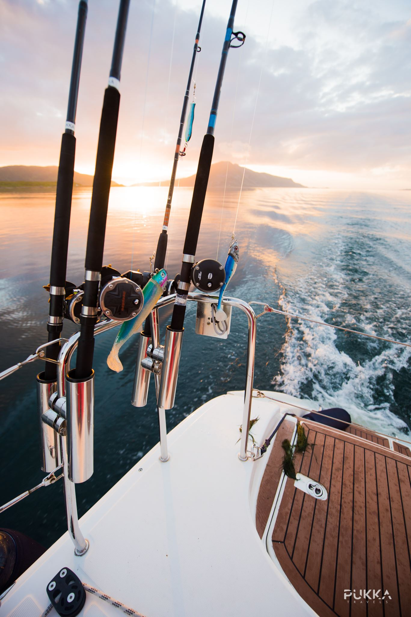 Bait To Plate: Dinner Sailing Experience