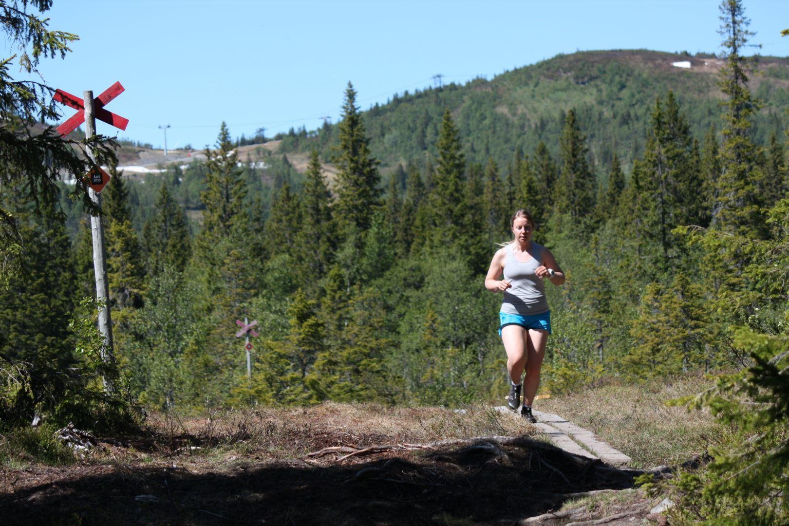Trailrunning i Björnen