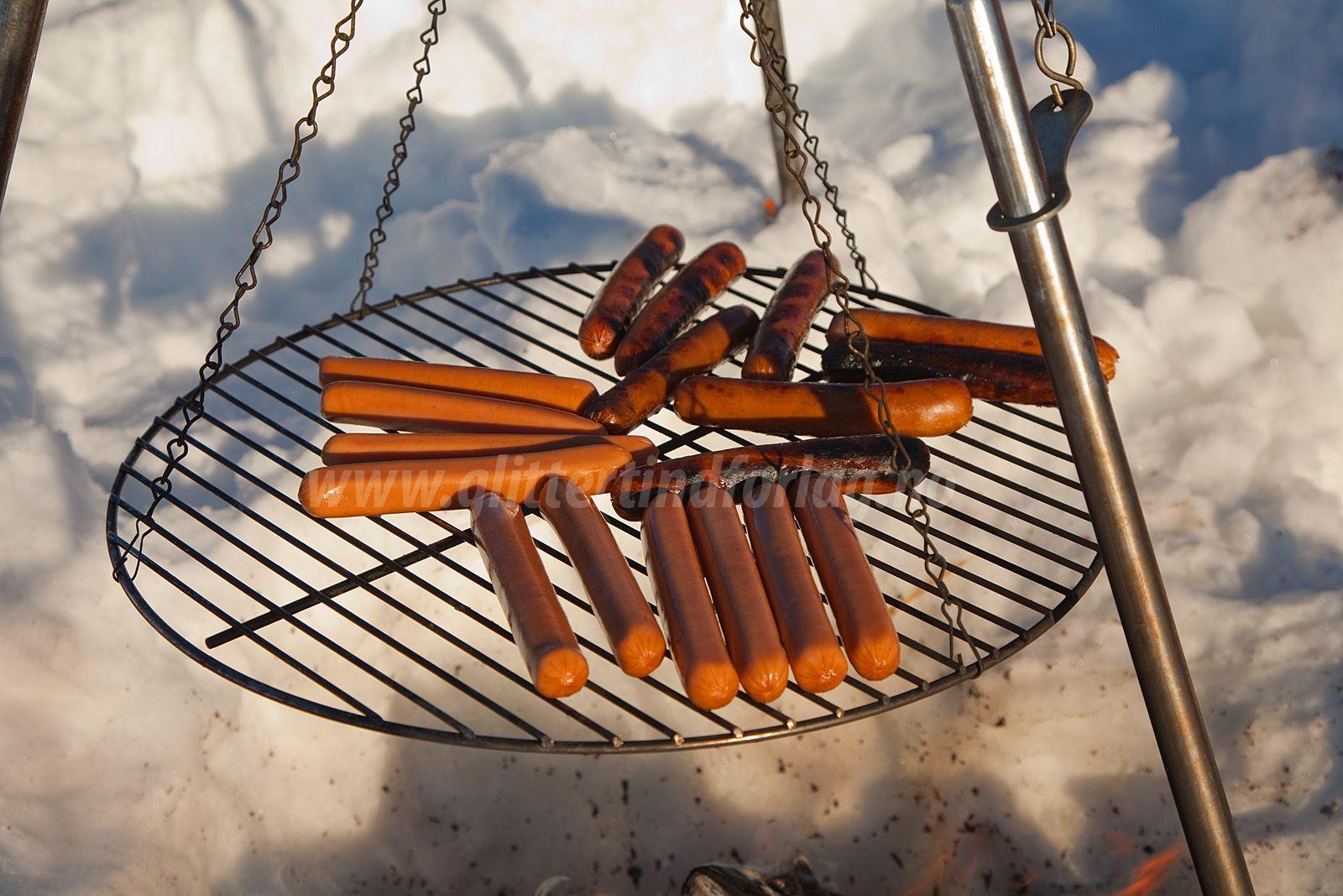 Fun - food and photo at Narvik Adventures