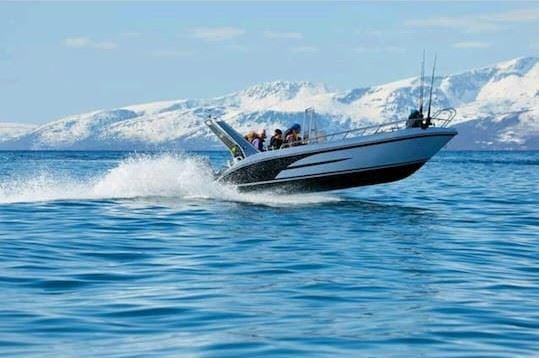 Boat rental - Lenangsøyra - Lyngen Sea Lodge