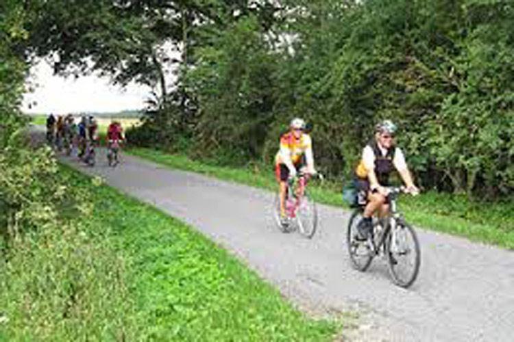 Guided cycling tours. Start Rødbyhavn