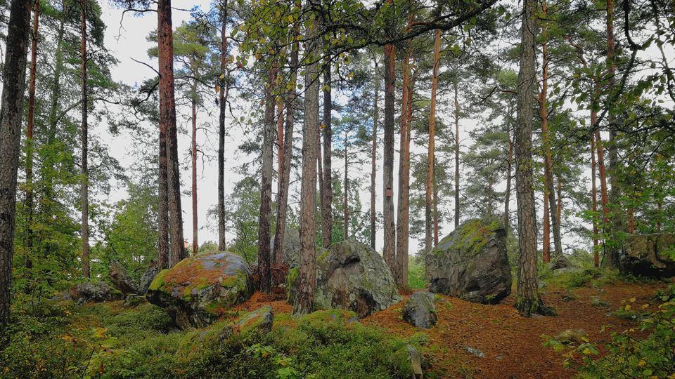 Naturreservat Fylleryd