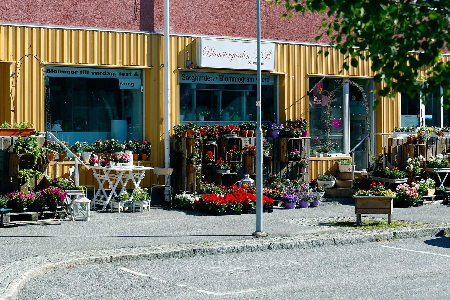 Anna Edvall,  © Linjalen, Blommor i butik