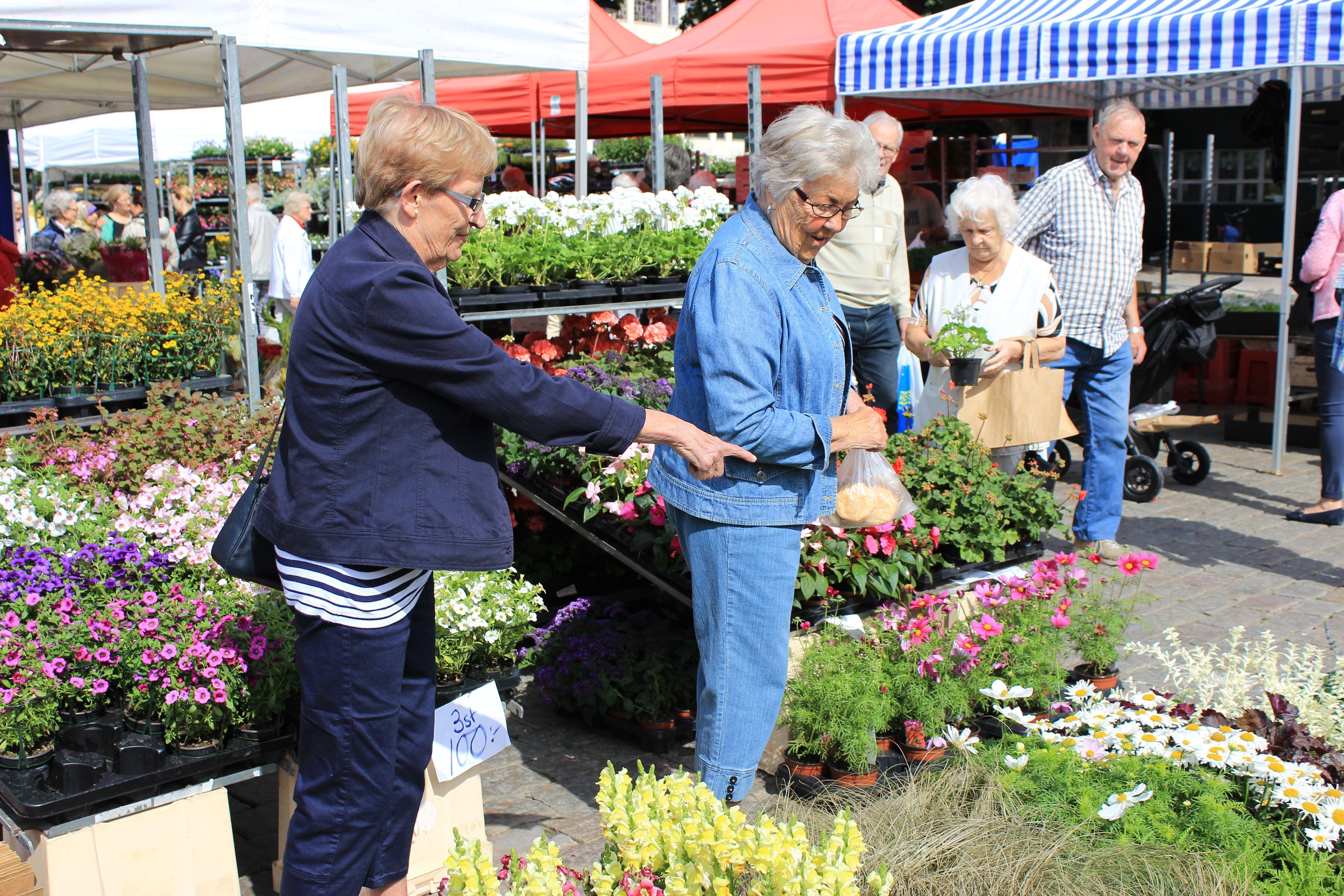 Vårmarknad
