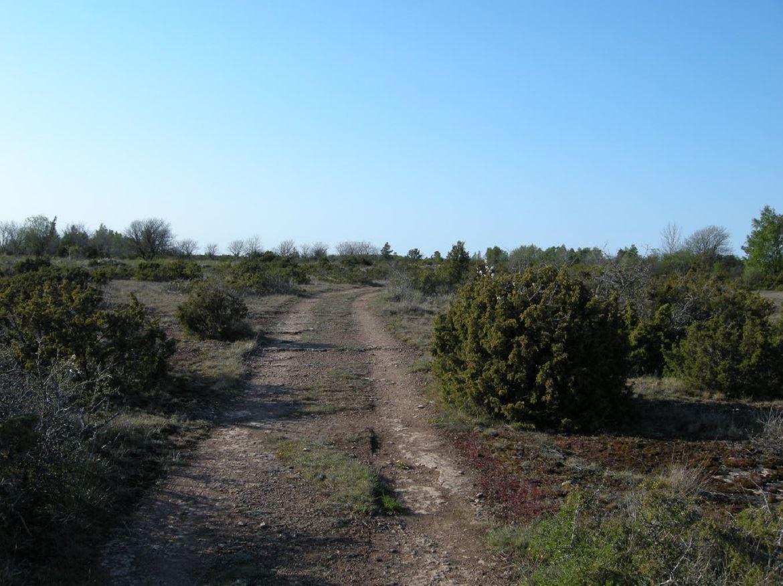 Källvandring i Dröstorps naturreservat