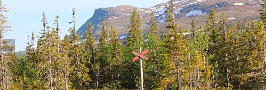Naturvandring till Husåberget