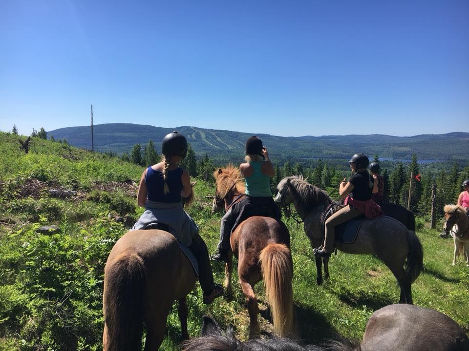 Ridturer på islandshästar Storskogens Hästturer