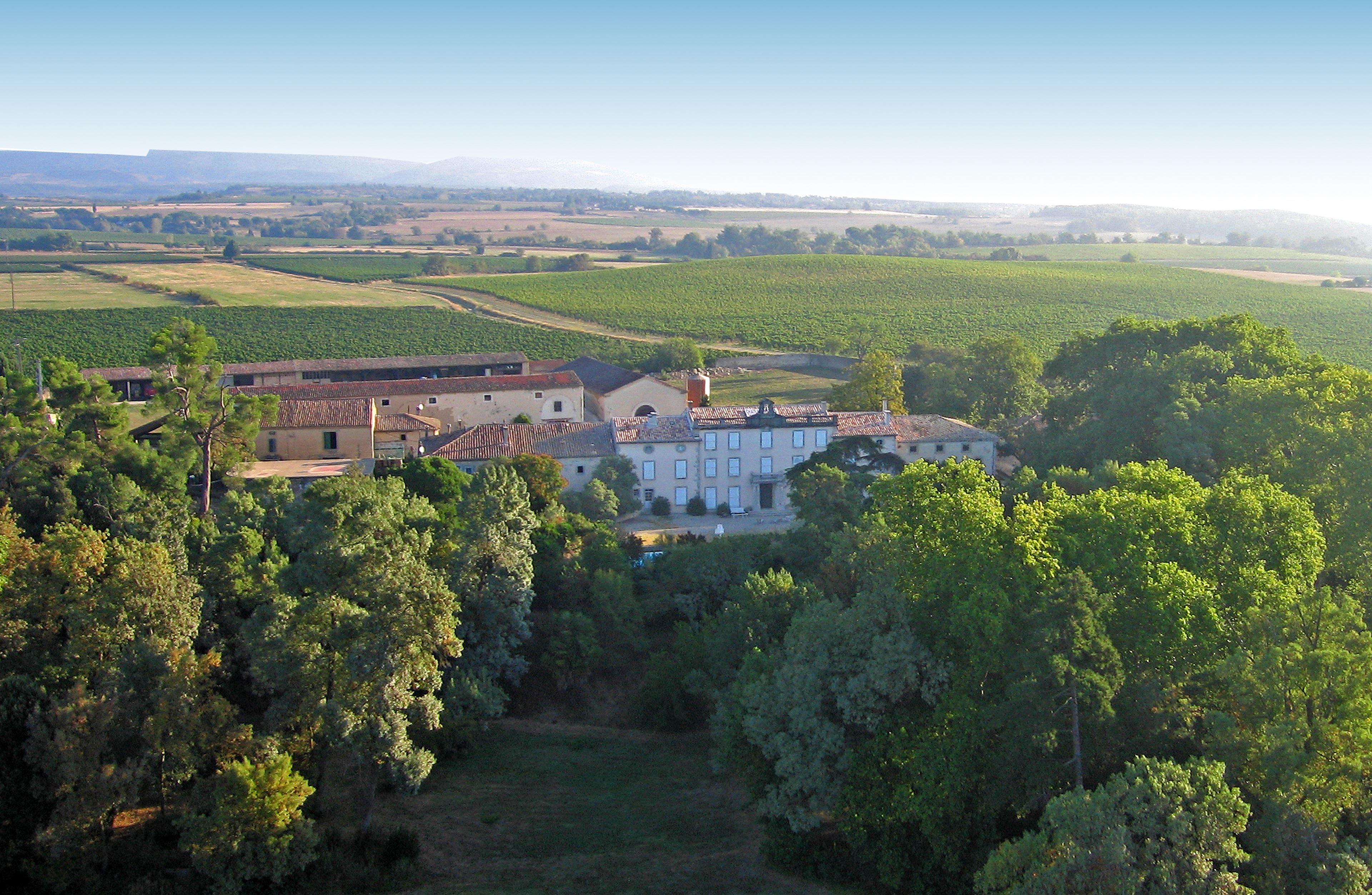 Visite et dégustation - Château Auzias Paretlongue