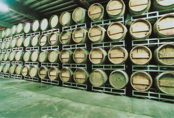 Dégustation de vins et visite - Château Auzias Paretlongue