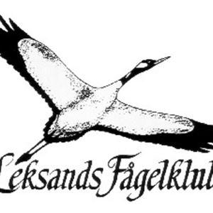 Rovfågelexkursion- Leksands Fågelklubb