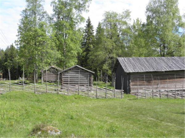 Friluftsgudstjänst i Finngammelgården