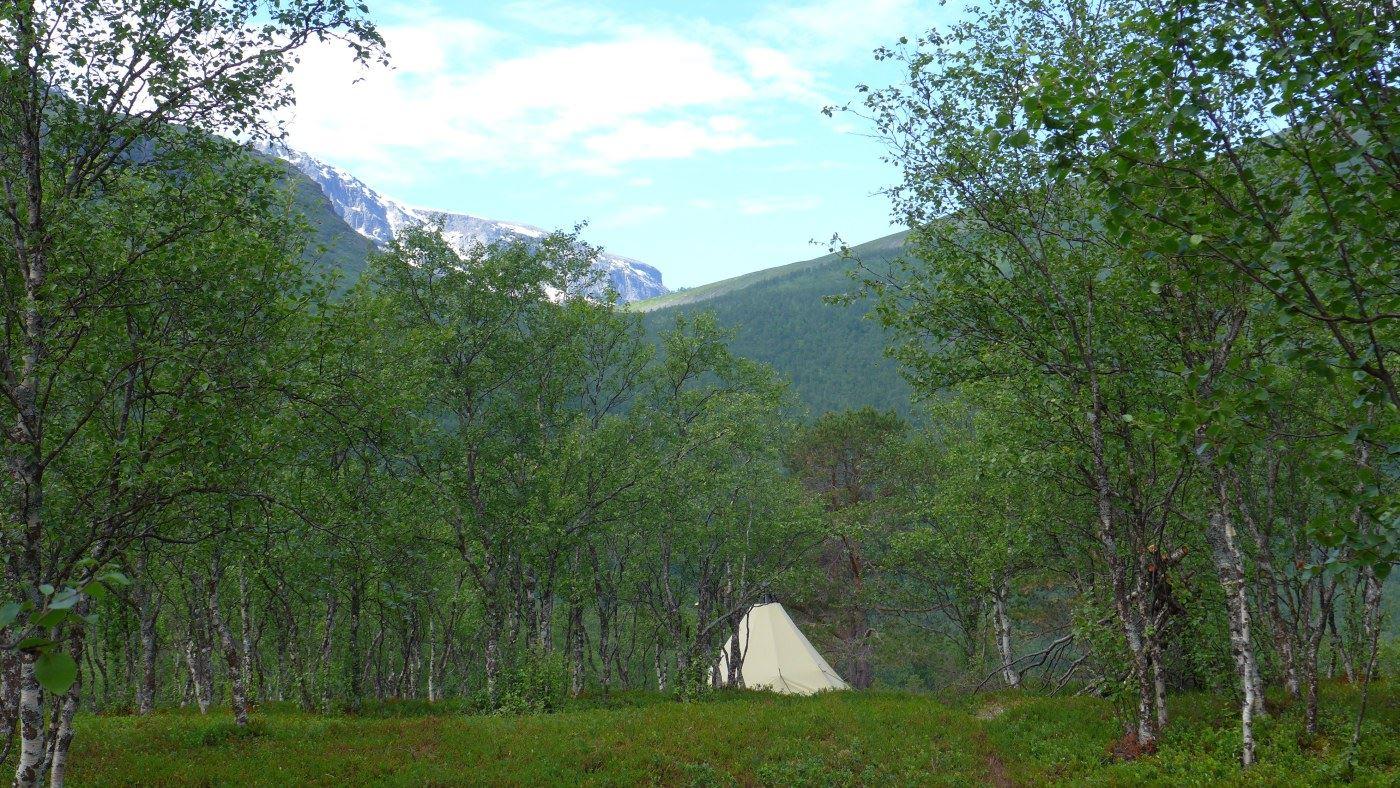 Lavvo overnight stay - Bergbjørn Fjellservice