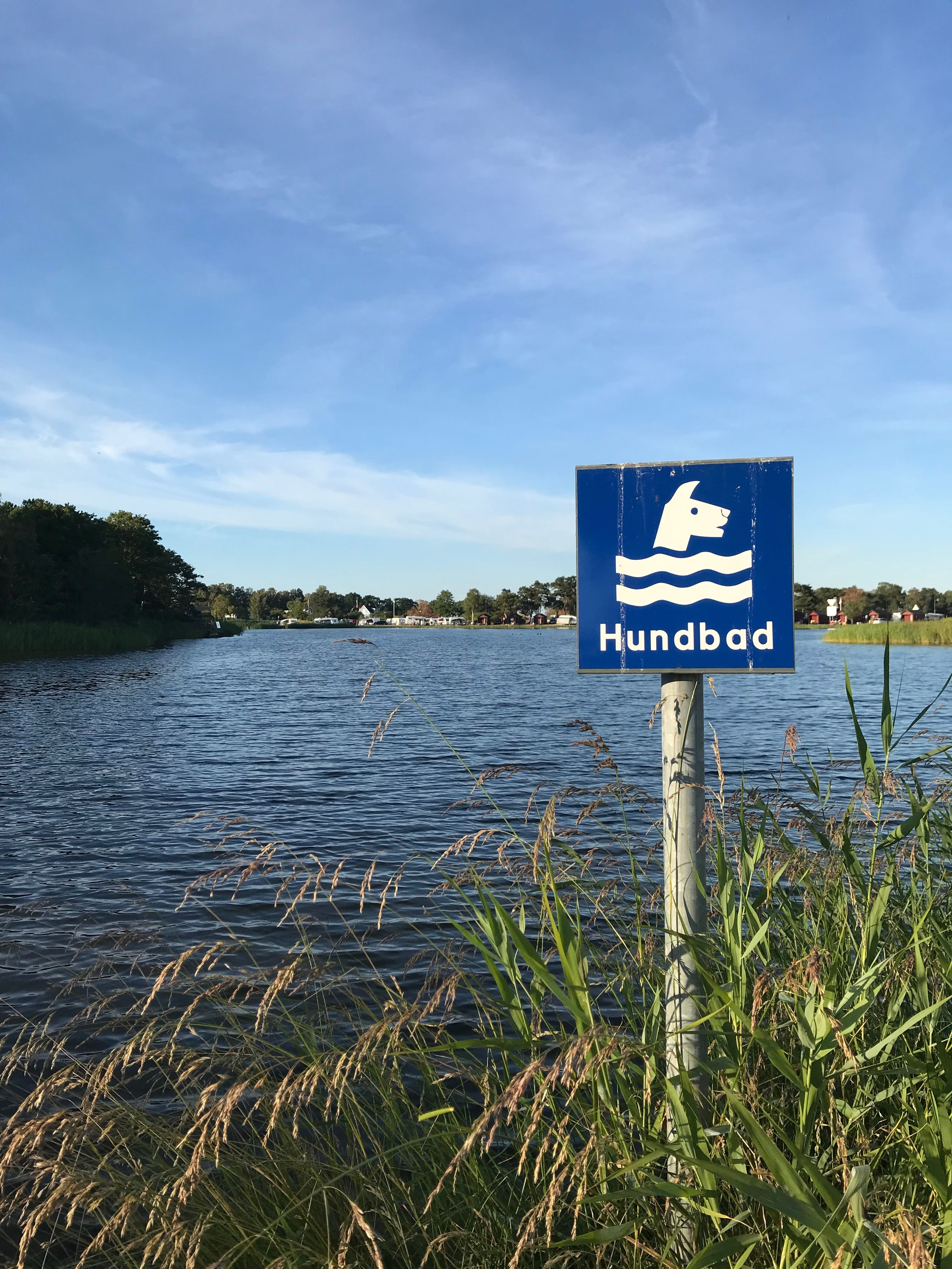 Torsås Kommun, Dog bath at Ängaskär in Bergkvara