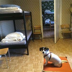 Boda Borg Lägenhet