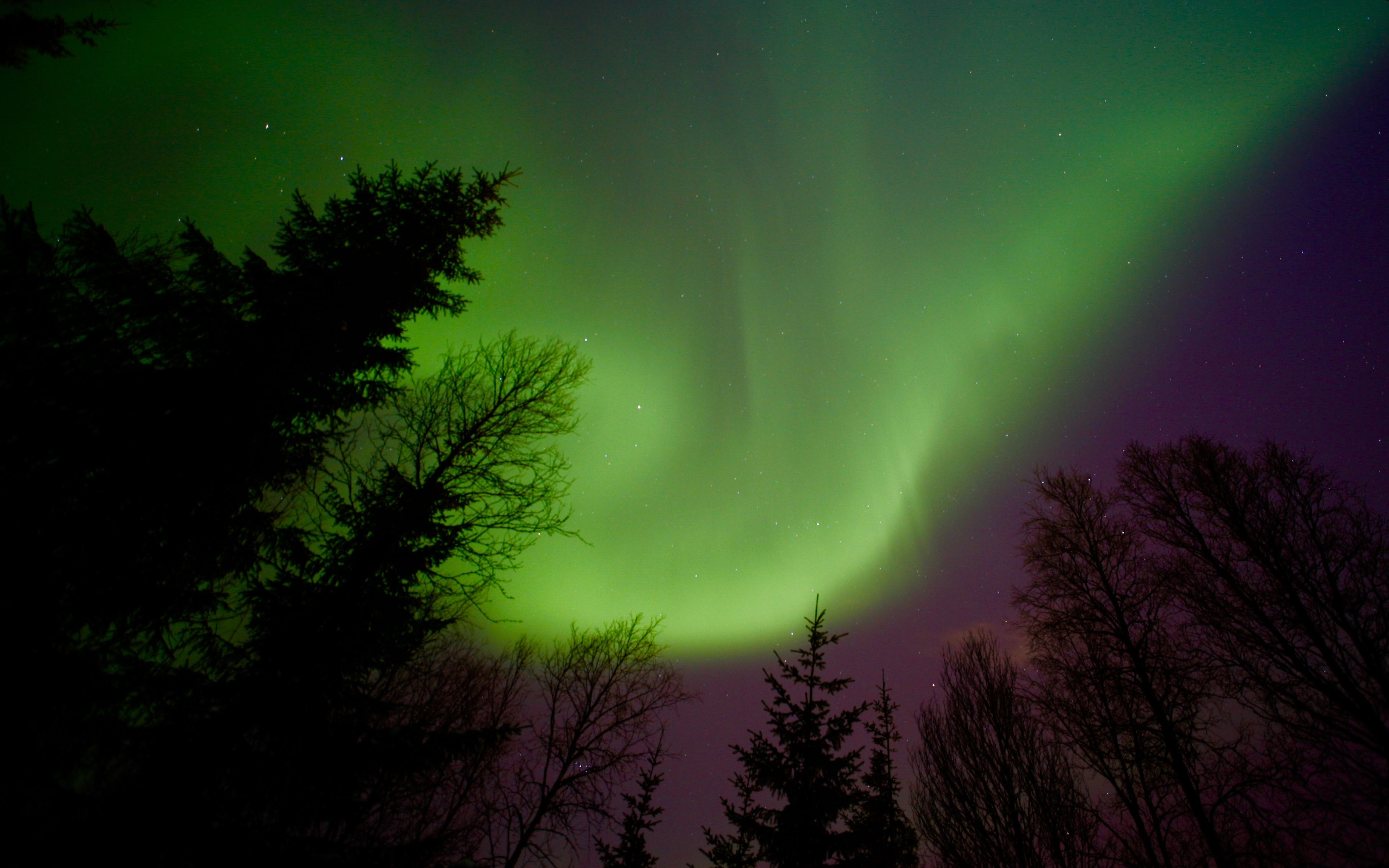 Northern Lights Tuesday