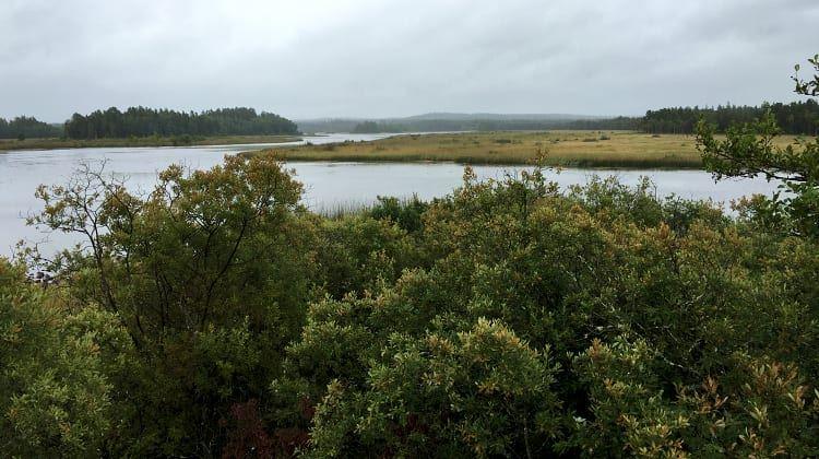 Ellen Flygare, Naturreservat Lunden