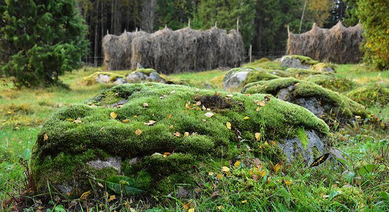 Länsstyrelsen, Nature reserve Hågeryd