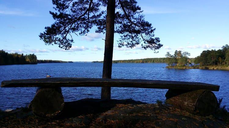 Das Naturreservat Braås Park