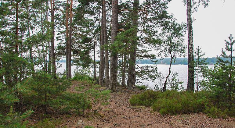 Länsstyrelsen, Naturschutzgebiet Dragsåsen