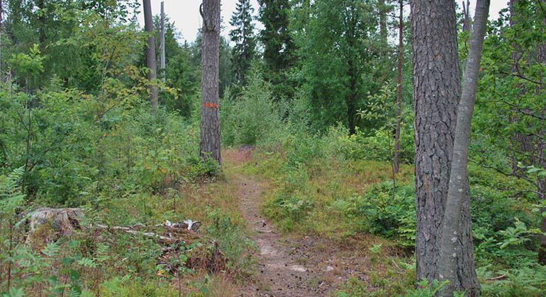 Länsstyrelsen, Naturschutzgebiet Evedalsåsen
