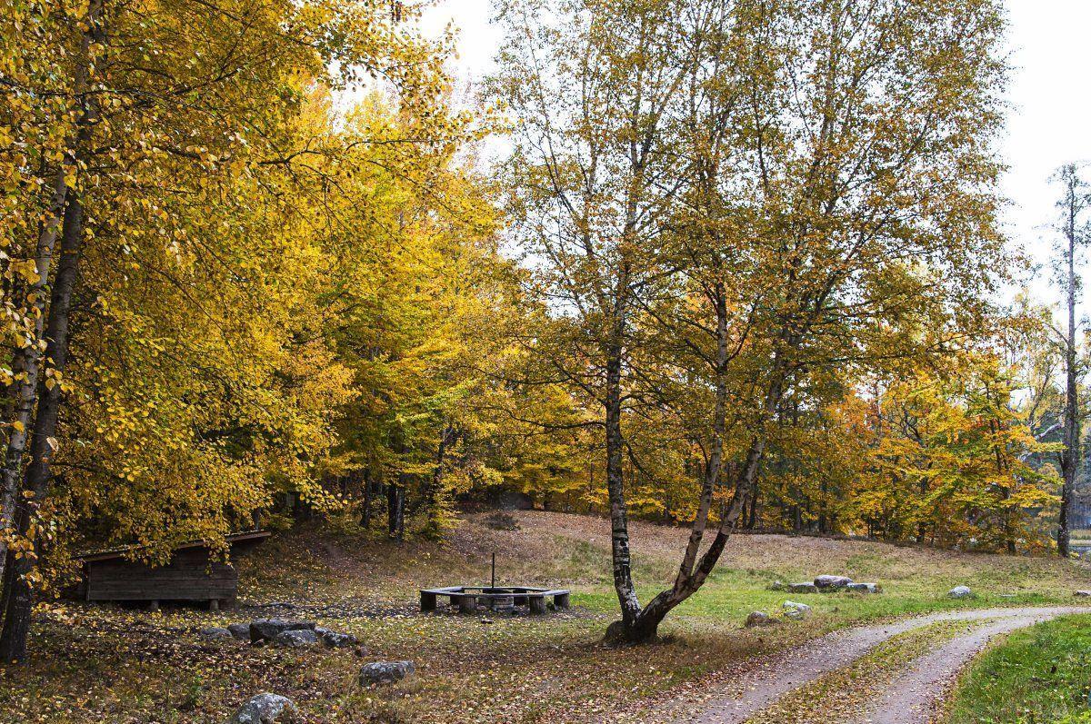 Nature reserve Helgö