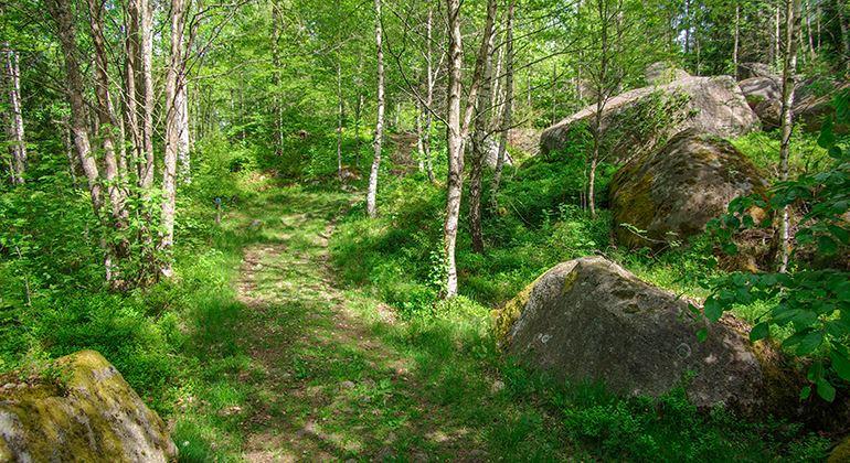 Länsstyrelsen, Naturschutzgebiet Notteryd
