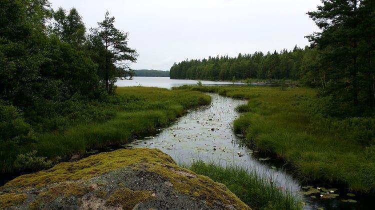 Naturschutzgebiet Notteryd