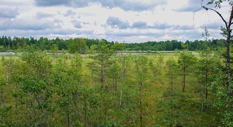 Länsstyrelsen, Nature reserve Teleborg
