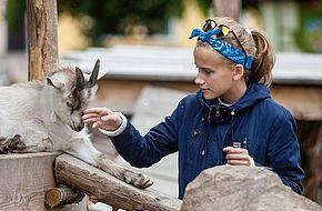 Säsongskort Skånes Djurpark