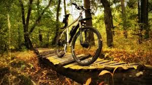 Internet, Mountainbike rental