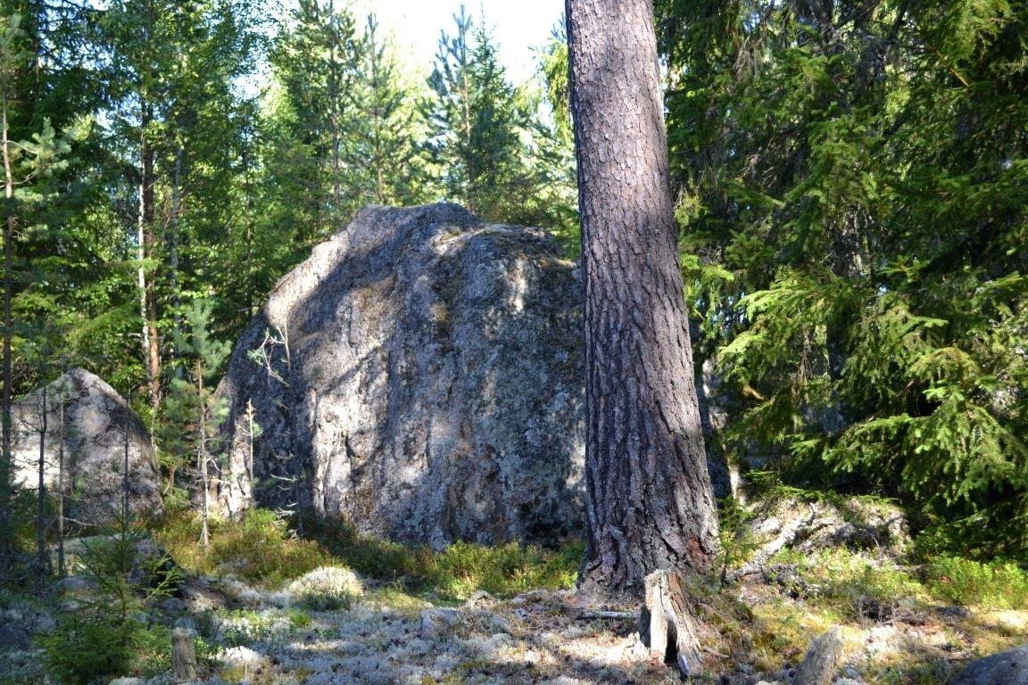 Närsberget (copy)