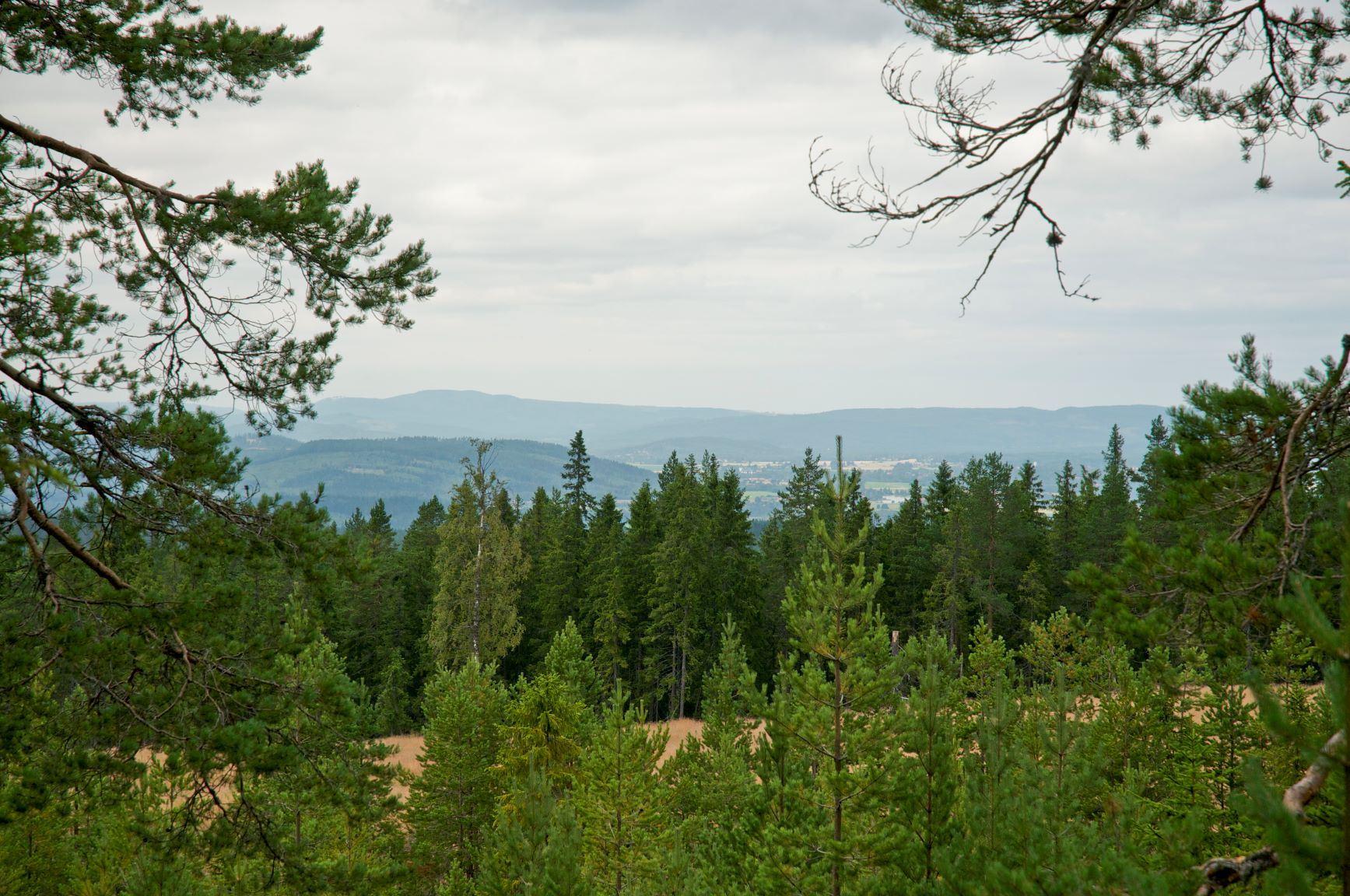 Ändlösberg (copy)